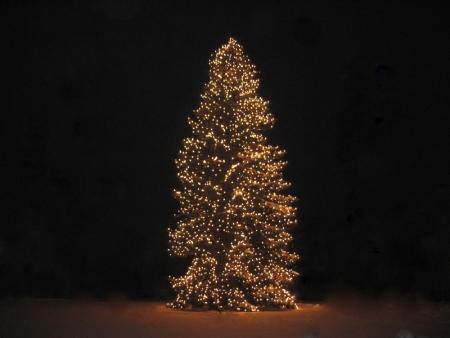 450_338_Frohe_Weihnachten_wuenscht_die_FFW_Egenhofen.jpg